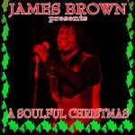 James Brown & Friends- James Brown Presents A Soulful Christmas - Double album