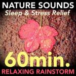 Yesconnie- Nature Sounds - Relaxing 60 Minute Rainstorm For Sleep And Stress Relief